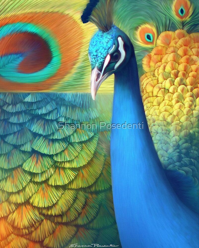 Peacock by Shannon Posedenti