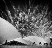 Sydney Opera Aria by meredithnz