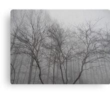 Minimal Winter Metal Print