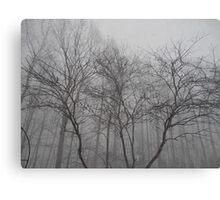 Minimal Winter Canvas Print