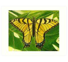 Wings of Change Art Print
