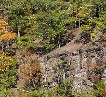 The Cliffs - Green Lane Reservoir - Green Lane PA - USA by MotherNature