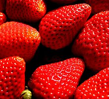 Berry Red by tsephotography