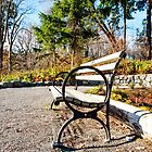 Park bench by Jaime Pharr