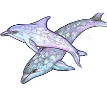 Dolphin Dreaming Photographic Print