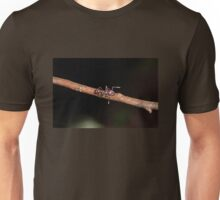World's Most Painful Sting Unisex T-Shirt