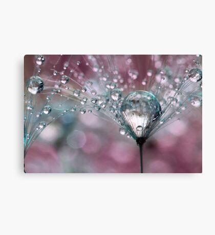 Raspberry Sparkles Canvas Print