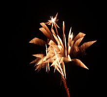 Firework Phoenix by Zak1995