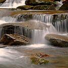 Rushing Stream by Leon Heyns