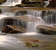 Rushing Stream by Leon Heyns