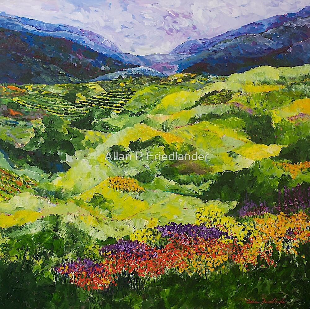 Soft Grass by Allan P Friedlander
