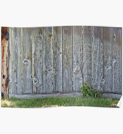 Wood Fence Poster
