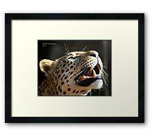 leopard smile Framed Print
