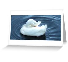 cold duck Greeting Card