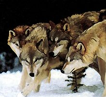 The pack by John Ryan