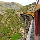 Viaduct, Taieri Gorge Railway by Pete  Burton