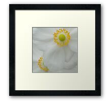 Up Close and Personal Framed Print