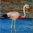 Chilean Flamingo On A Lake by Kashmere1646