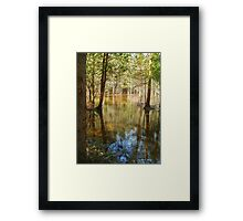 May Fifth... Framed Print