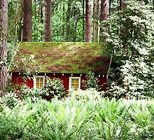 Red House Green Forest by Z Roberts