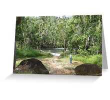 The Swimming Hole at the Murray Falls Picnic Area Greeting Card