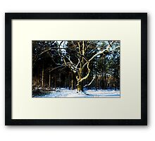 Saying Goodbye to winter Framed Print