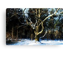 Saying Goodbye to winter Canvas Print