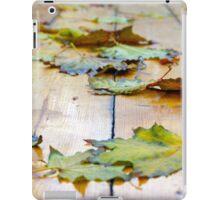 Selective focus on the autumn fallen maple leaves iPad Case/Skin