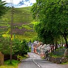 Wanlockhead Village by Tom Gomez