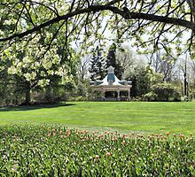 Spring Garden by Monnie Ryan