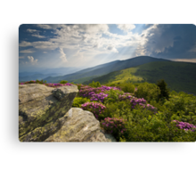 Roan Mountain From Appalachian Trail Near Jane's Bald Canvas Print