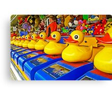 Luv' a Duck - We've got 'em all lined up Canvas Print