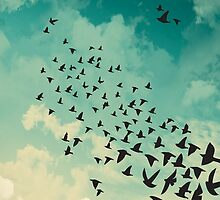 Flocking Birds by Lisagraphy