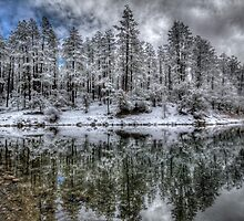 Stay Frosty by Bob Larson