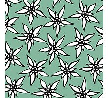 White & Black Hand Drawn Flowers on Teal Photographic Print