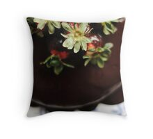 Chocolate Cayenne Cake Throw Pillow