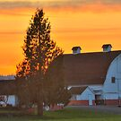 Red and White Barn by Dale Lockwood