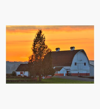 Red and White Barn Photographic Print