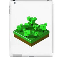 Isometric Island 01 iPad Case/Skin
