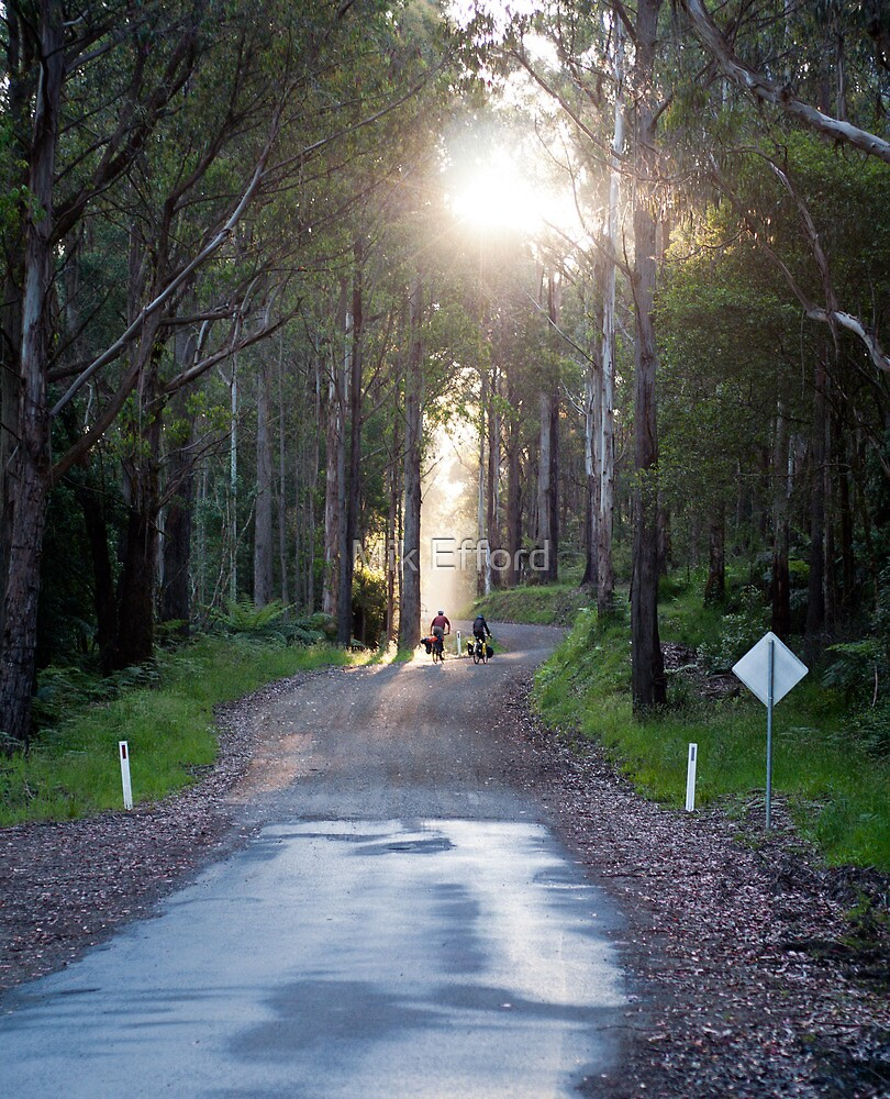 Touring the Otways by Mik Efford