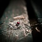 Ring by Aronss