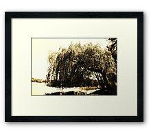 Waving Willow  Framed Print