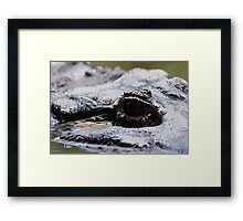 The eyes are always watching.... Framed Print