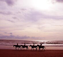 horses on petinget beach by Michael Brewer