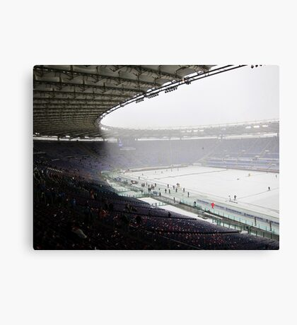 Blizzard Conditions Canvas Print