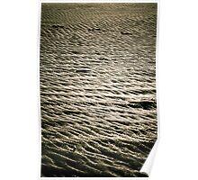 Sandy Patterns Poster