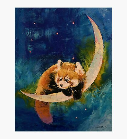 Red Panda Moon Photographic Print