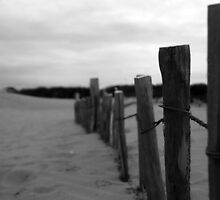 Fence to nowhere by merseypd