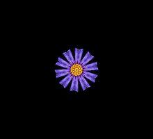 Flower by Vac1