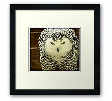 """"""" Who you staring at??"""" Framed Print"""
